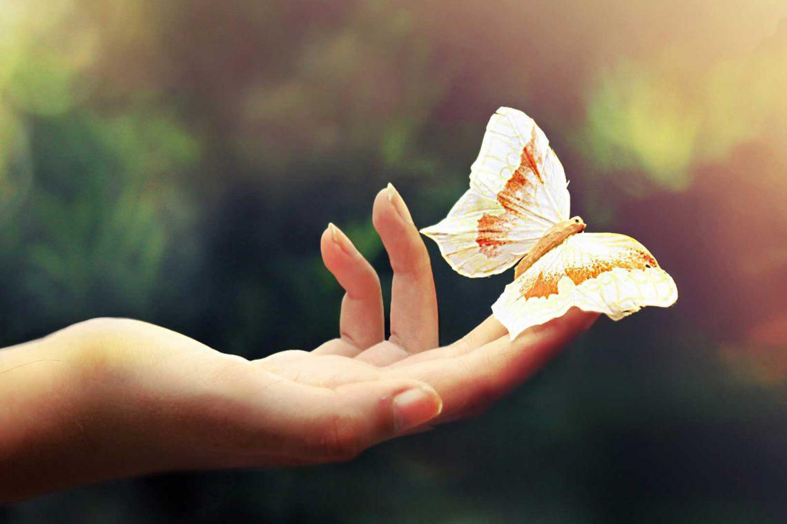 ۱۰۰ دلخوشی کوچک زندگی ــ دستی که یک پروانه روی آن نشسته است